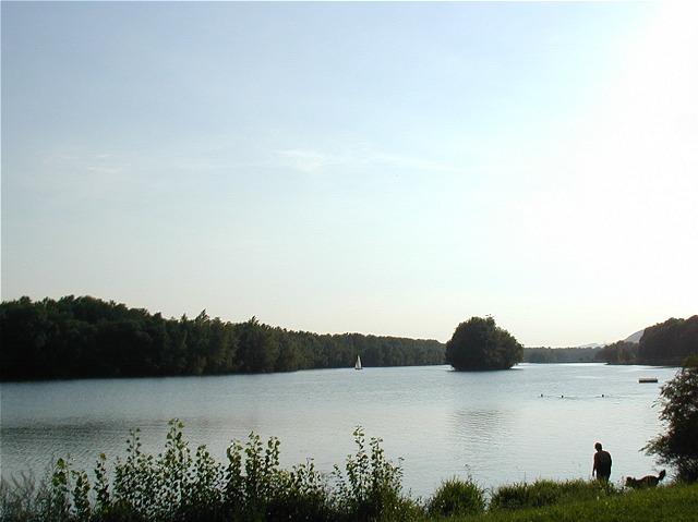 Donauseitenarm Luberegg